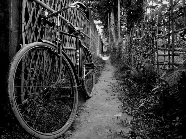 my_bicycle