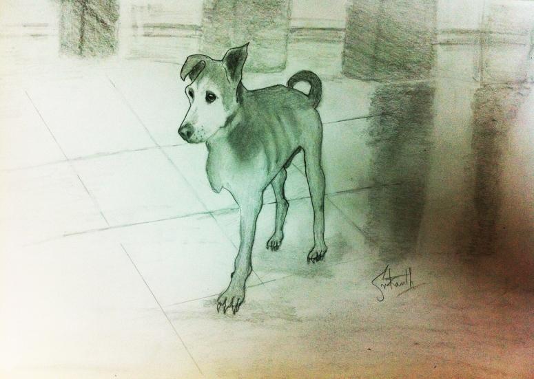 Color pencil sketch